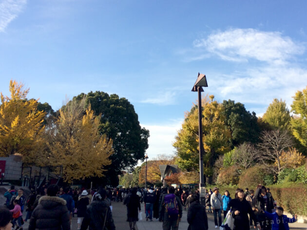 紅葉する上野公園
