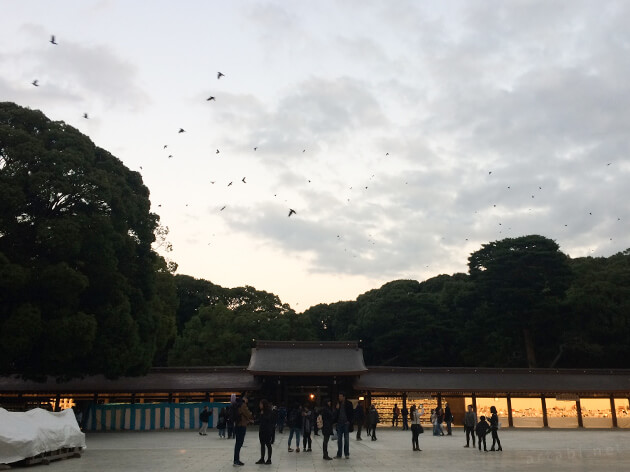 明治神宮の夕景