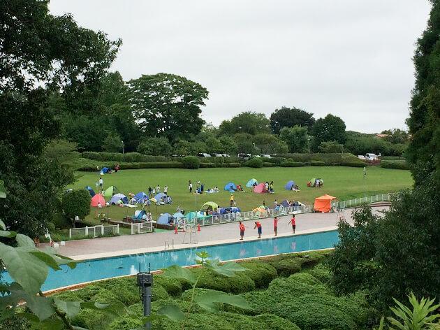 「リソル生命の森」の屋外プール