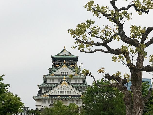 大阪城公園から大阪城を望む